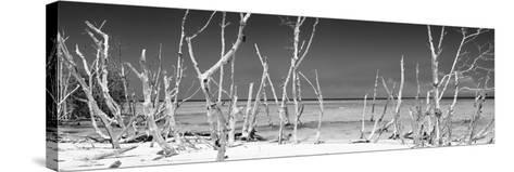Cuba Fuerte Collection Panoramic BW - Wild Beach-Philippe Hugonnard-Stretched Canvas Print