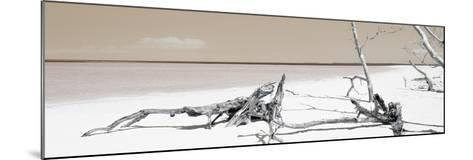 Cuba Fuerte Collection Panoramic - Wild Orange Lagoon-Philippe Hugonnard-Mounted Photographic Print