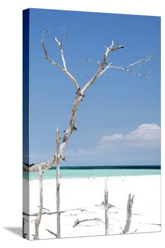 Cuba Fuerte Collection - Blue Serenity-Philippe Hugonnard-Stretched Canvas Print