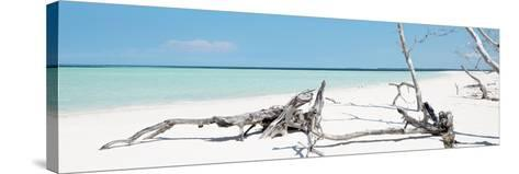 Cuba Fuerte Collection Panoramic - Wild Blue Lagoon-Philippe Hugonnard-Stretched Canvas Print