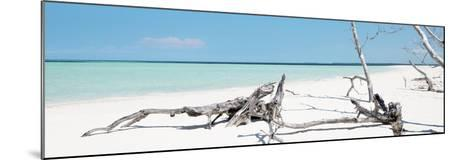 Cuba Fuerte Collection Panoramic - Wild Blue Lagoon-Philippe Hugonnard-Mounted Photographic Print