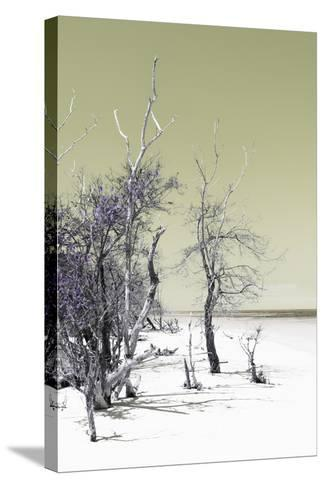 Cuba Fuerte Collection - Sandy Beach Pastel Olive II-Philippe Hugonnard-Stretched Canvas Print
