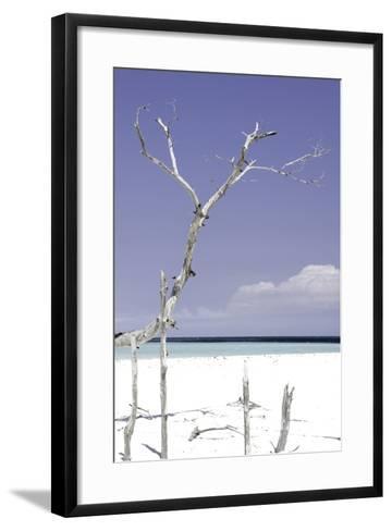 Cuba Fuerte Collection - Purple Serenity-Philippe Hugonnard-Framed Art Print