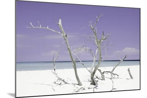 Cuba Fuerte Collection - Purple Stillness-Philippe Hugonnard-Mounted Photographic Print