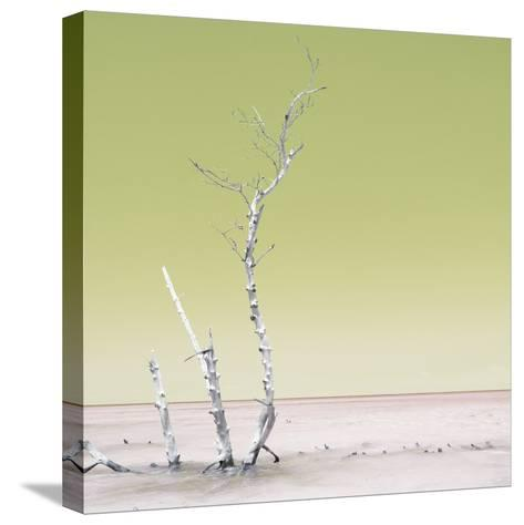 Cuba Fuerte Collection SQ - Ocean Nature - Pastel Yellow-Philippe Hugonnard-Stretched Canvas Print