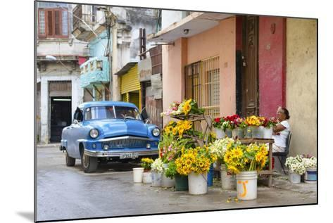 Cuba Fuerte Collection - Sunflowers-Philippe Hugonnard-Mounted Photographic Print