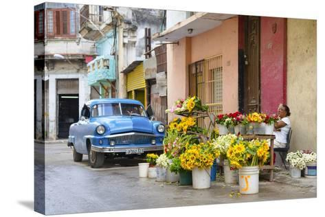 Cuba Fuerte Collection - Sunflowers-Philippe Hugonnard-Stretched Canvas Print