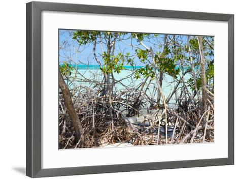 Cuba Fuerte Collection - Mangroves-Philippe Hugonnard-Framed Art Print