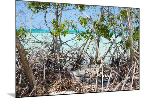 Cuba Fuerte Collection - Mangroves-Philippe Hugonnard-Mounted Photographic Print