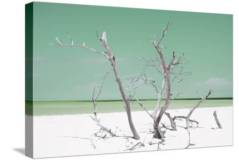 Cuba Fuerte Collection - Green Stillness-Philippe Hugonnard-Stretched Canvas Print