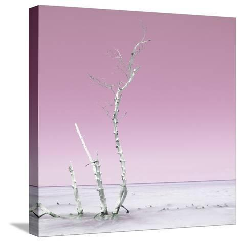 Cuba Fuerte Collection SQ - Ocean Nature - Pastel Pink-Philippe Hugonnard-Stretched Canvas Print