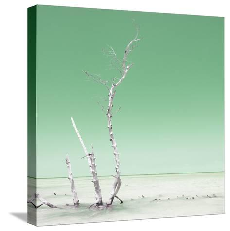 Cuba Fuerte Collection SQ - Ocean Nature - Pastel Green-Philippe Hugonnard-Stretched Canvas Print