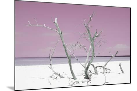 Cuba Fuerte Collection - Pink Stillness-Philippe Hugonnard-Mounted Photographic Print