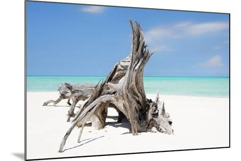Cuba Fuerte Collection - Natural Sculpture-Philippe Hugonnard-Mounted Photographic Print