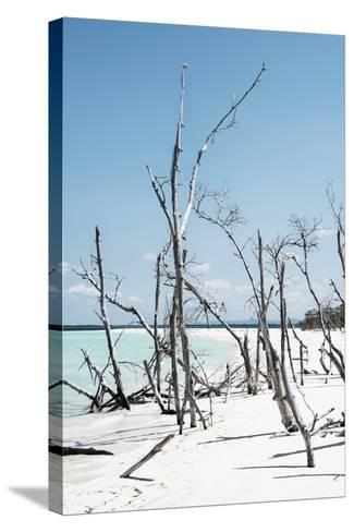 Cuba Fuerte Collection - Tropical Wild Beach III-Philippe Hugonnard-Stretched Canvas Print