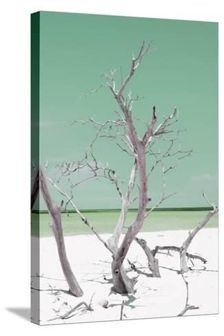 Cuba Fuerte Collection - Green Stillness II-Philippe Hugonnard-Stretched Canvas Print