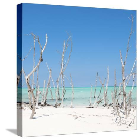 Cuba Fuerte Collection SQ - Wild Beach-Philippe Hugonnard-Stretched Canvas Print
