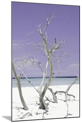 Cuba Fuerte Collection - Purple Stillness II-Philippe Hugonnard-Mounted Photographic Print
