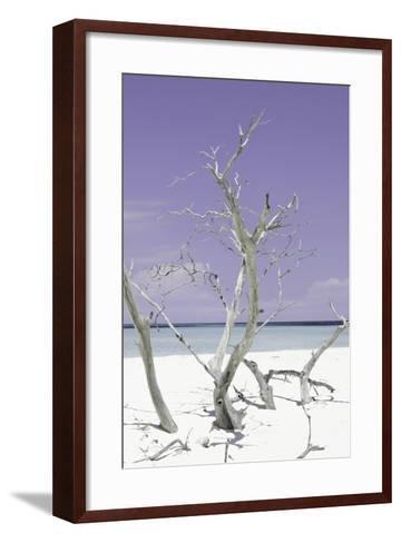 Cuba Fuerte Collection - Purple Stillness II-Philippe Hugonnard-Framed Art Print