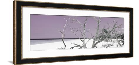 Cuba Fuerte Collection Panoramic - Tropical Beach Nature - Pastel Purple-Philippe Hugonnard-Framed Art Print