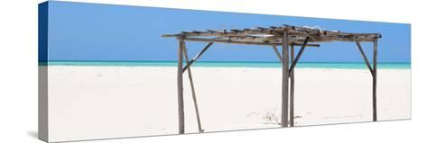 Cuba Fuerte Collection Panoramic - Wild Arbor-Philippe Hugonnard-Stretched Canvas Print