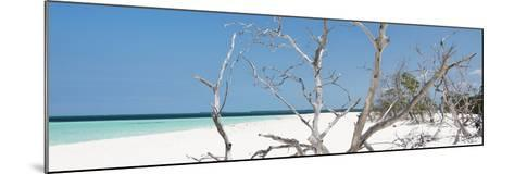 Cuba Fuerte Collection Panoramic - Tropical Beach Nature-Philippe Hugonnard-Mounted Photographic Print