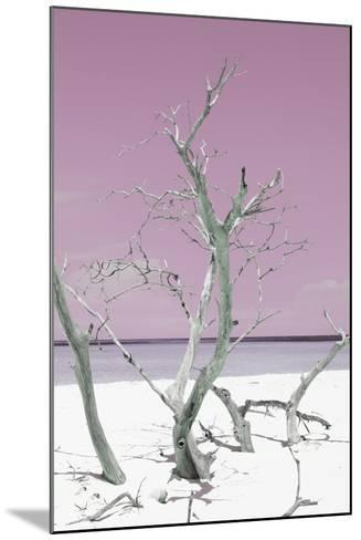 Cuba Fuerte Collection - Pink Stillness II-Philippe Hugonnard-Mounted Photographic Print