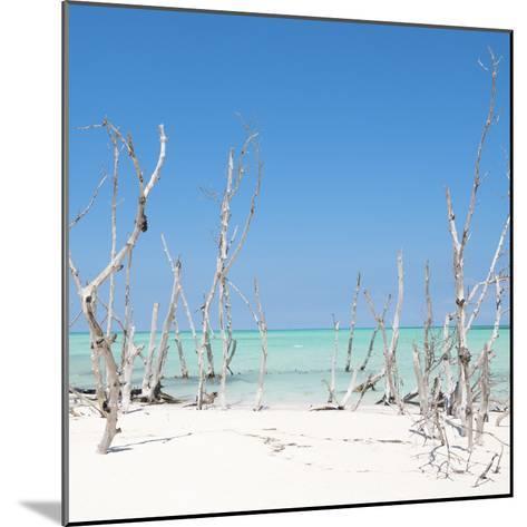 Cuba Fuerte Collection SQ - Wild Beach-Philippe Hugonnard-Mounted Photographic Print