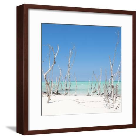 Cuba Fuerte Collection SQ - Wild Beach-Philippe Hugonnard-Framed Art Print