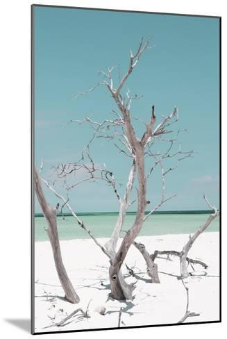 Cuba Fuerte Collection - Coral Green Stillness II-Philippe Hugonnard-Mounted Premium Photographic Print