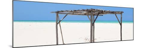 Cuba Fuerte Collection Panoramic - Wild Arbor-Philippe Hugonnard-Mounted Photographic Print