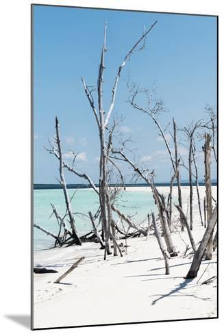 Cuba Fuerte Collection - Tropical Wild Beach II-Philippe Hugonnard-Mounted Photographic Print