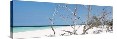 Cuba Fuerte Collection Panoramic - Tropical Beach Nature-Philippe Hugonnard-Stretched Canvas Print
