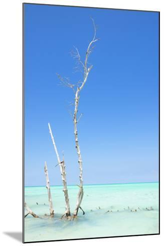 Cuba Fuerte Collection - Ocean Nature-Philippe Hugonnard-Mounted Photographic Print