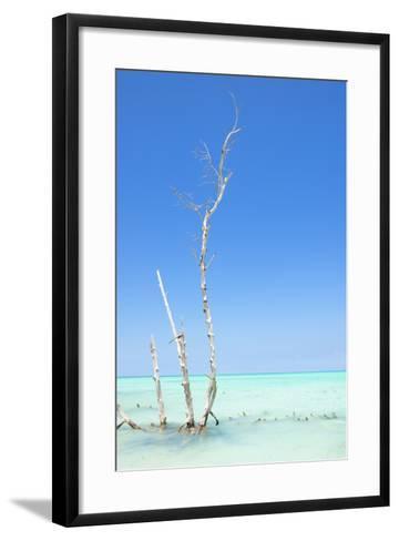 Cuba Fuerte Collection - Ocean Nature-Philippe Hugonnard-Framed Art Print