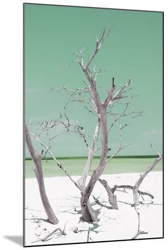 Cuba Fuerte Collection - Green Stillness II-Philippe Hugonnard-Mounted Photographic Print