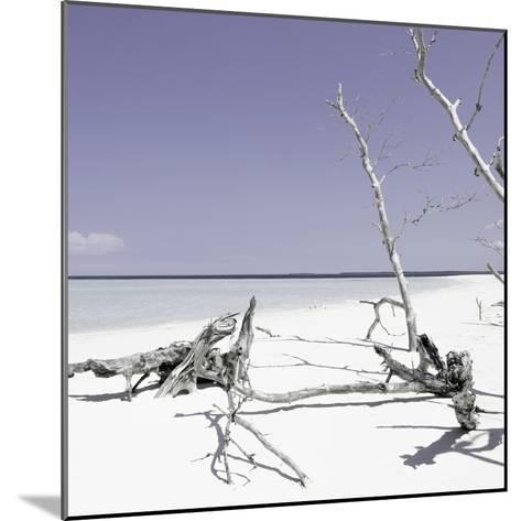Cuba Fuerte Collection SQ - Wild White Sand Beach - Pastel Purple-Philippe Hugonnard-Mounted Photographic Print