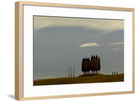 Tuscan Pines-Valda Bailey-Framed Art Print