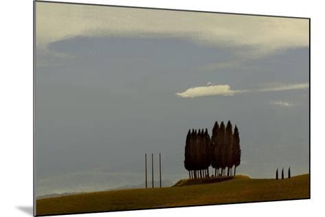 Tuscan Pines-Valda Bailey-Mounted Photographic Print