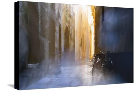 After the Rain-Valda Bailey-Stretched Canvas Print