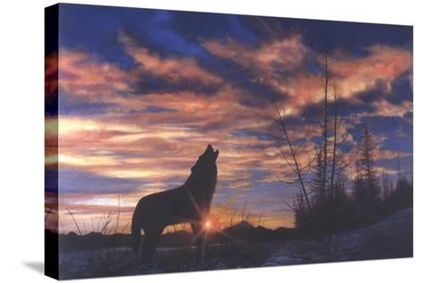 Sky Wolf-Bill Makinson-Stretched Canvas Print