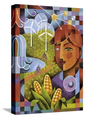 Alternatives-Jim Dryden-Stretched Canvas Print