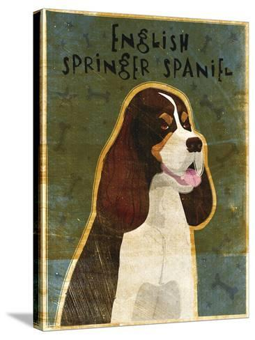 English Springer Spaniel (tri-color)-John W Golden-Stretched Canvas Print
