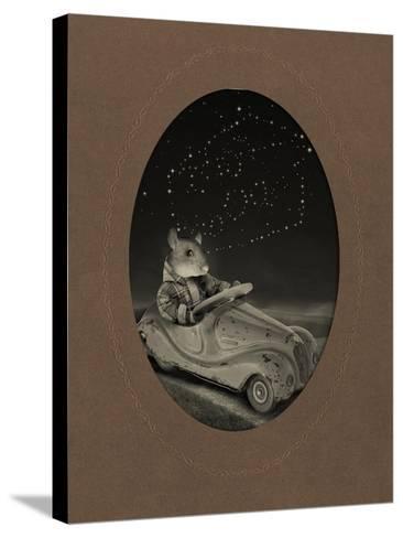Mice Series #5-J Hovenstine Studios-Stretched Canvas Print