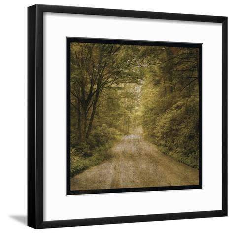 Flannery Fork Road No. 1-John W Golden-Framed Art Print