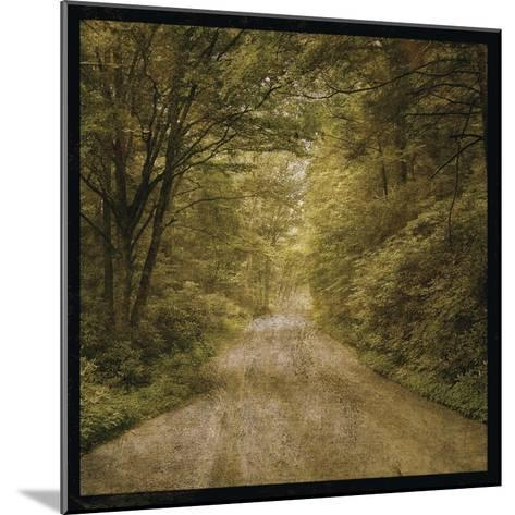 Flannery Fork Road No. 1-John W Golden-Mounted Giclee Print