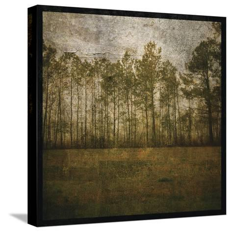 A Line of Pines-John W Golden-Stretched Canvas Print