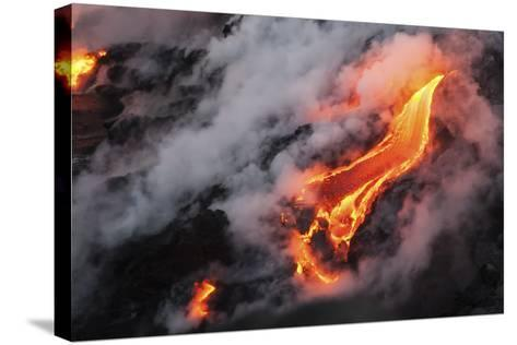 Dragon?s Tongue-Chris Moyer-Stretched Canvas Print