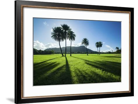 Kapiolani Park Classic Treeline-Cameron Brooks-Framed Art Print