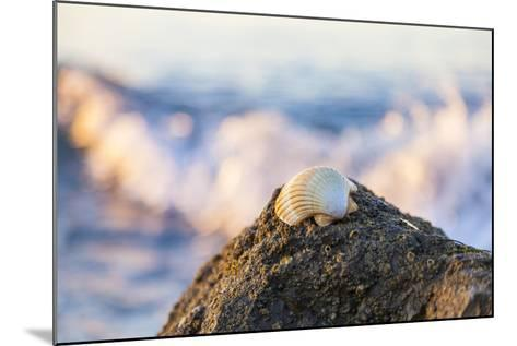 Shellview Surf-Chris Moyer-Mounted Photographic Print
